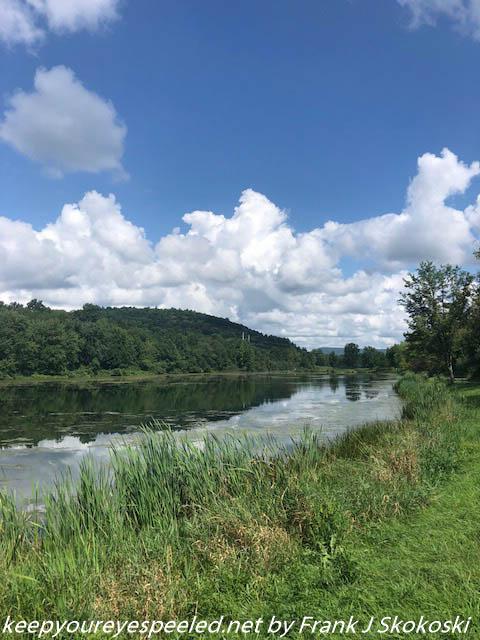 PPL Wetlands  (4 of 10)