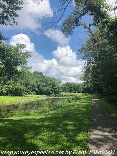 PPL Wetlands  (8 of 10)