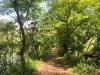 PPL Wetlands  (1 of 1)