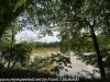 PPL Wetlands  (2 of 36)
