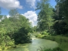PPL Wetlands  (3 of 10)