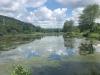 PPL Wetlands  (6 of 10)