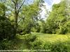 PPL Wetlands  (7 of 36)