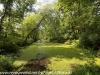 PPL Wetlands  (9 of 36)