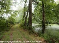 PPL-Wetlands-1-of-52