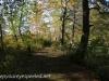 PPL Wetlands  (2 of 35)