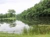 PPL Wetlands -002