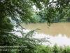 PPL Wetlands -018