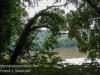 PPL Wetlands -048