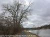 PPL Wetlands (43 of 49)