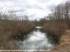 PPL Wetlands (46 of 49)