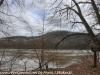 PPL Wetlands (49 of 49)