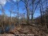 PPL Wetlands  (10 of 29)