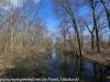 PPL Wetlands  (11 of 29)