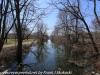 PPL Wetlands  (21 of 29)