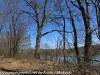 PPL Wetlands  (26 of 29)