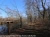PPL Wetlands  (3 of 29)
