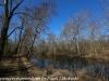 PPL Wetlands  (4 of 29)