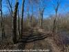 PPL Wetlands  (5 of 29)
