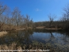 PPL Wetlands  (6 of 29)