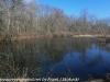 PPL Wetlands  (7 of 29)