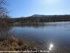 PPL Wetlands  (9 of 29)