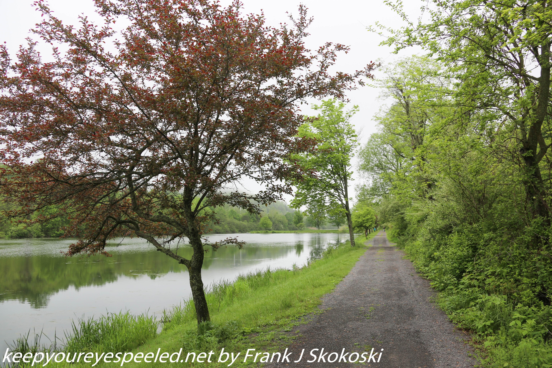 PPL Wetlands  (29 of 51)