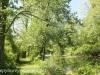 wetlands (10 of 12).jpg