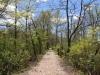 PPL Wetlands 094
