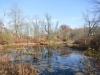PPL Wetlands -16
