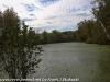 PPL Wetlands (16 of 37)
