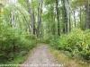 PPL Wetlands (8 of 37)