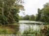 PPL Wetlands (1 of 50)