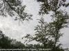 PPL Wetlands (11 of 50)