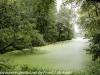 PPL Wetlands hike (17 of 43)