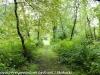 PPL Wetlands hike (18 of 43)