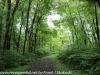 PPL Wetlands hike (5 of 43)