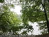 PPL Wetlands hike (8 of 43)