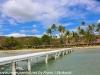 Copamarina day four Gilligan's island (1 of 23)