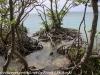 Copamarina day four Gilligan's island (11 of 23)
