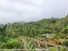 Puerto Rico Day Six Drive Rain forest Inn February 13 18 (10 of 22)