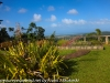 Puerto Rico Day Six Drive Rain forest Inn February 13 18 (20 of 22)