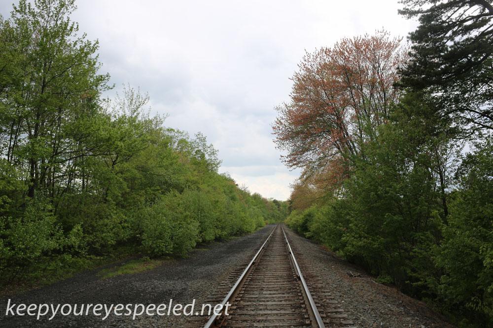 railroad hike (31 of 40).jpg