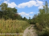 Railroad track hike  (2 of 25)