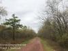Rails to trails -12