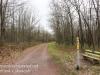 Rails to trails -6