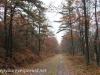 Rails to trails hike (12 of 42)