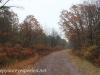 Rails to trails hike (4 of 42)