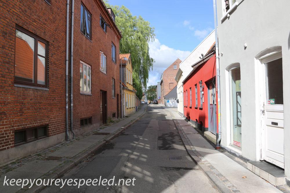 Roskilde  Denmark  July 30 2015 (12 of 33).jpg
