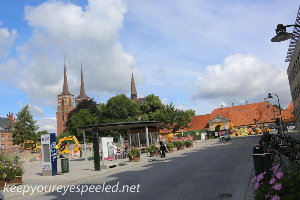 Roskilde  Denmark  July 30 2015 (15 of 33).jpg